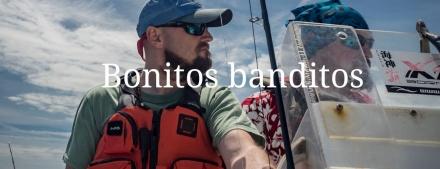 Bonitos Banditos