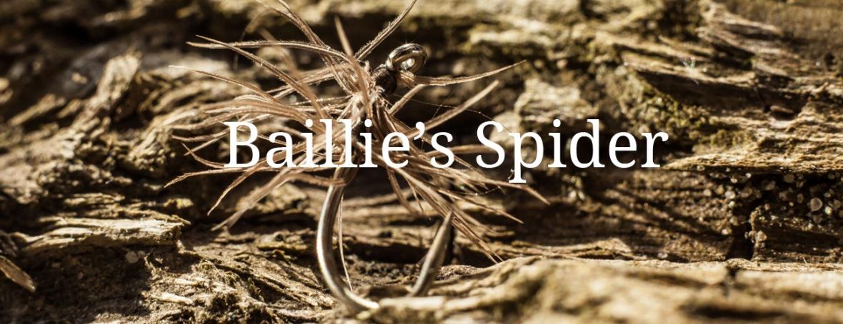 Baillie's Spider