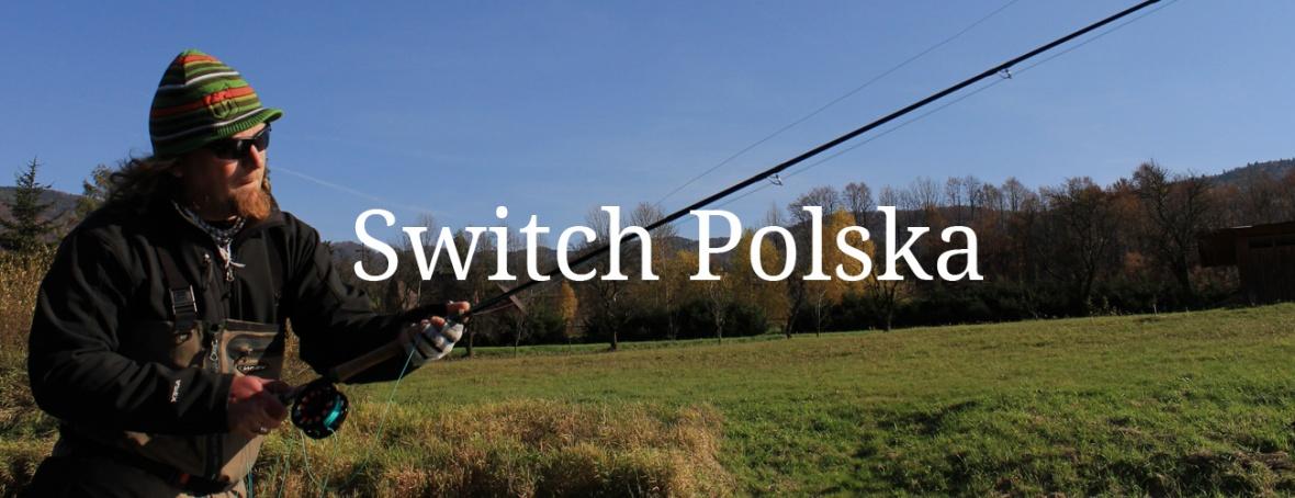 Switch Polska